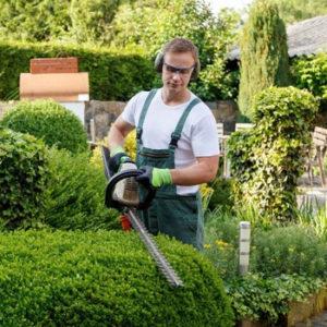 firma ogrodnicza